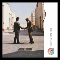Wish You Were Here  Framed Album Cover S
