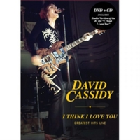 David Cassidy: I Think I Love You - Grea