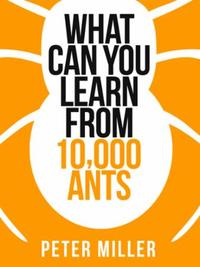 What You Can Learn From 10,000 Ants