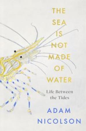 Bilde av The Sea Is Not Made Of Water: Life Between The Tides