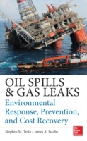 Oil Spills and Gas Leaks: Environmental