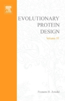 Evolutionary Approaches to Protein Desig