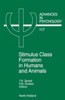 Stimulus Class Formation in Humans and A