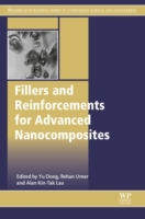 Fillers and Reinforcements for Advanced