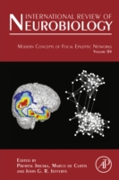 Modern Concepts of Focal Epileptic Netwo