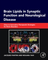 Brain Lipids in Synaptic Function and Ne