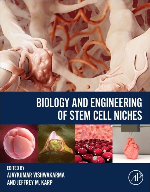 Biology and Engineering of Stem Cell Nic