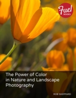 Power of Color in Nature and Landscape P