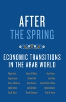 After the Spring: Economic Transitions i
