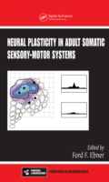 Neural Plasticity in Adult Somatic Senso