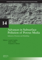 Advances in Subsurface Pollution of Poro