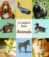 A Ladybird Book: Animals