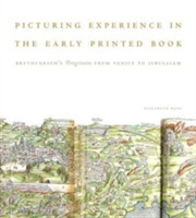 Picturing Experience in the Early Printe