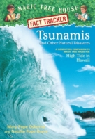 Tsunamis and Other Natural Disasters