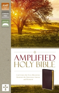 Amplified Holy Bible, Bonded Leather, Bu