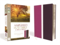 Amplified Holy Bible, Large Print, Leath