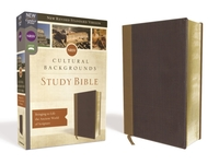 NRSV, Cultural Backgrounds Study Bible,