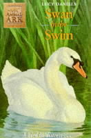 Swan In The Swim