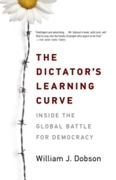 Dictator's Learning Curve