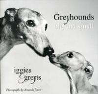 Greyhounds Big And Small