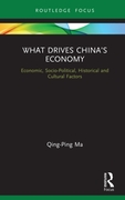 What Drives China's Economy