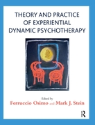 Theory and Practice of Experiential Dyna