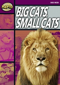 Rapid Stage 1 Set A: Big Cats Small Cats