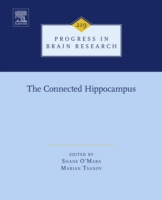 Connected Hippocampus