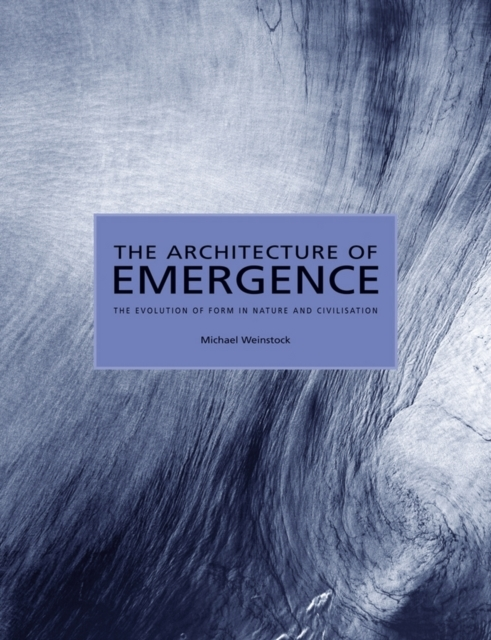 The Architecture of Emergence