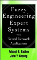 Fuzzy Engineering Expert Systems with Ne