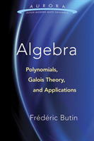 Algebra: Polynomials, Galois Theory, and