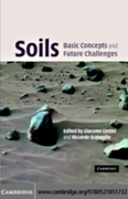Soils: Basic Concepts and Future Challen