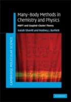 Many-Body Methods in Chemistry and Physi