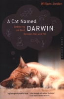Cat Named Darwin