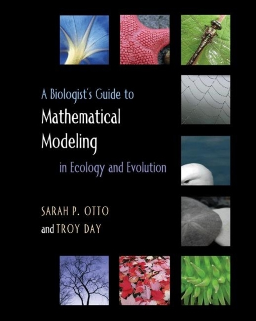 A Biologist's Guide to Mathematical Mode