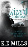 Wizard Undercover: Book 2 of the Rogue Agent Novels