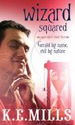 Wizard Squared: Book 3 of the Rogue Agent Novels