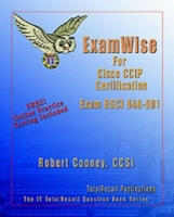 CCNP/CCIP BSCI Study Guide