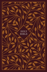 KJV, Thinline Reference Bible, Cloth ove