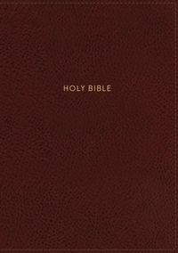 NKJV, Deluxe Reference Bible, Personal S