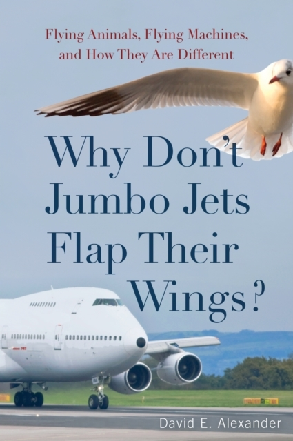 Why Don't Jumbo Jets Flap Their Wings?