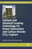 Calcium and Chemical Looping Technology
