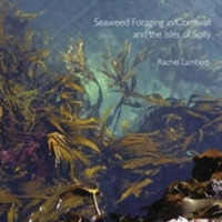 Seaweed Foraging in Cornwall and the Isl