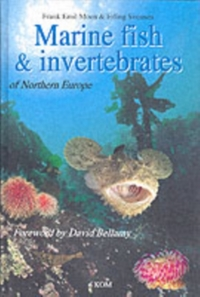 Marine Fish & Invertebrates of Northern