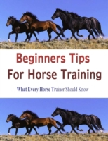 Beginners Tips for Horse Training: What