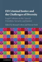 EU Criminal Justice and the Challenges o