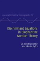 Discriminant Equations in Diophantine Nu