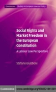 Social Rights and Market Freedom in the