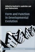 Form and Function in Developmental Evolu