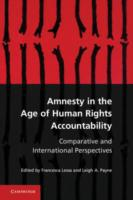 Amnesty in the Age of Human Rights Accou